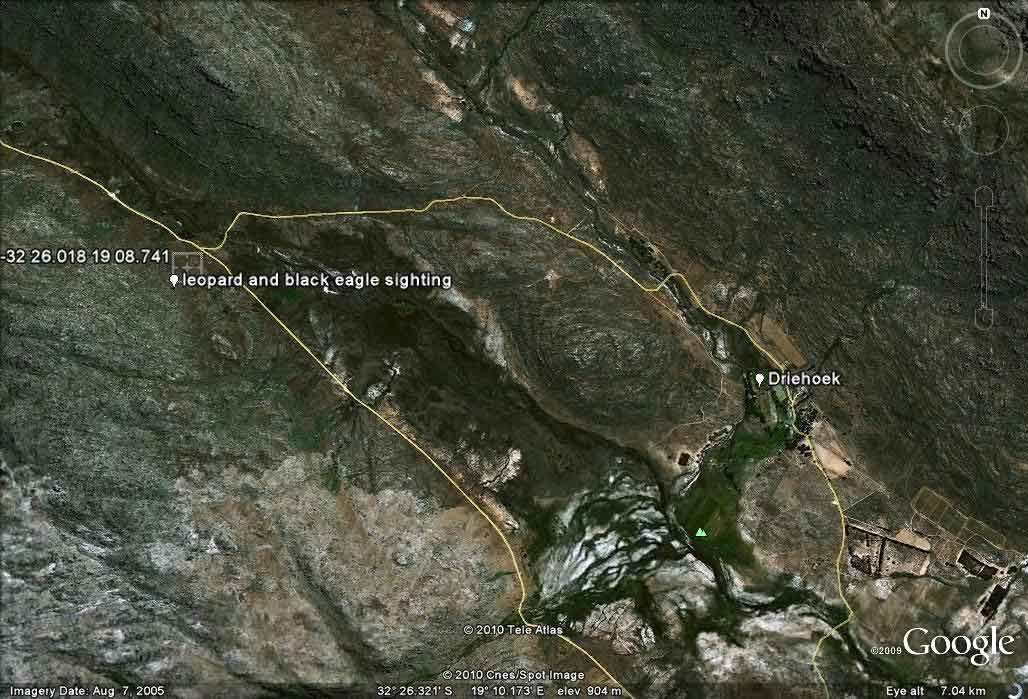 Google Earth Map showing where Derick & Charmaine Oosthuizen saw Verreaux's Eagles mob a Cape Leopard.
