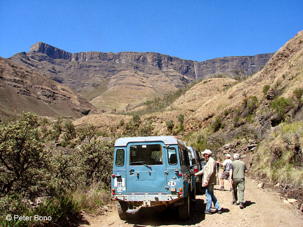 Sani Pass in 4 WD vehicles © Peter Bono